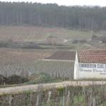Winter Burgundy Wine Tasting… Good or Bad Idea?