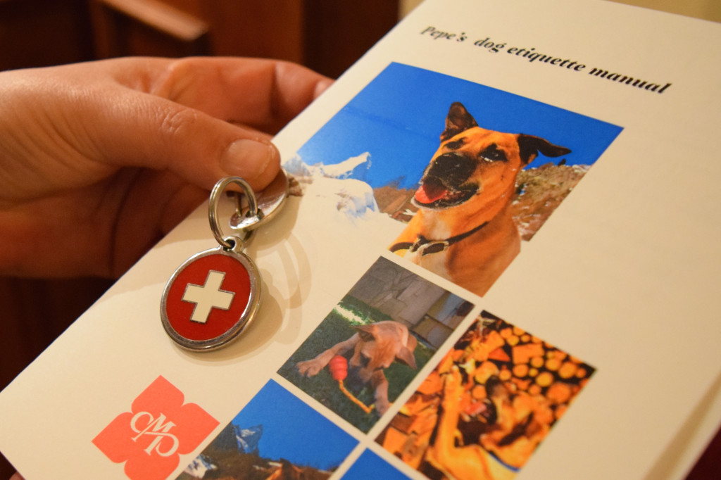 Dog tags and program for lucky pets who stay at Hotel Mont Cervin Palace